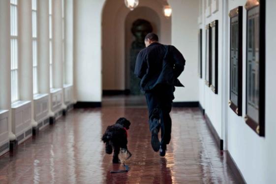 Barack Obama_ Pete Souza