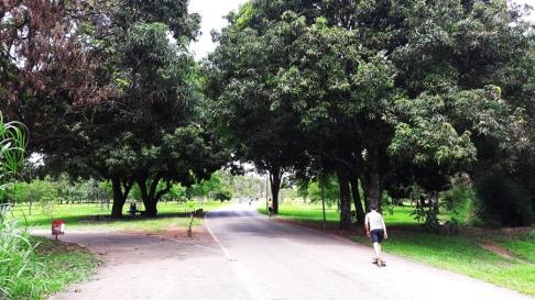 Parque Aguas Claras 4