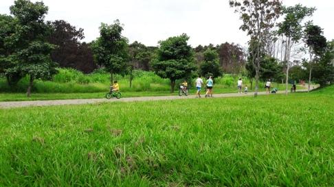 Parque Aguas Claras 6