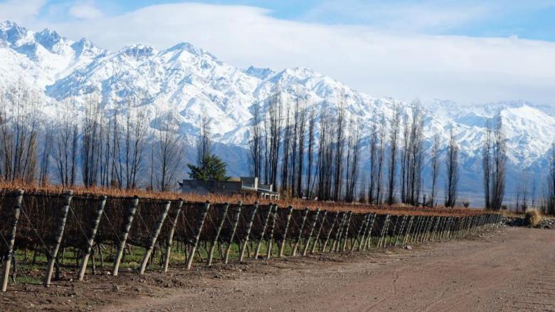 Zuccardi Valle de Uco2